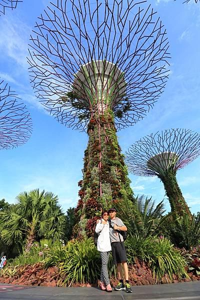 新加坡-1 (16).JPG