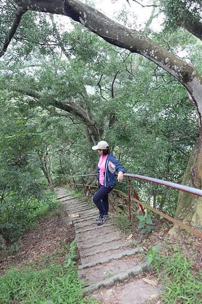 聚興山 (11).JPG