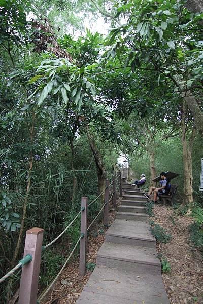 聚興山 (13).JPG