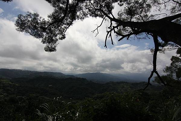 聚興山 (22).JPG