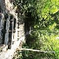 棲蘭森林遊樂區 (13).JPG