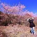 武陵農場 (2).JPG