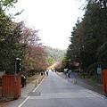 武陵農場 (31).JPG