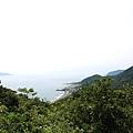 灣坑頭山 (14).JPG