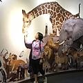 200801_台北市立動物園 (4).JPG