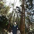 太平山 (4).JPG