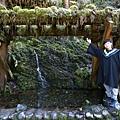 太平山 (12).JPG