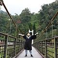 太平山 (36).JPG