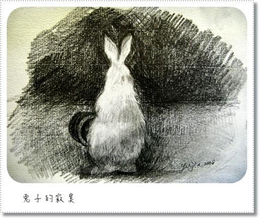 兔子的寂寞.jpg