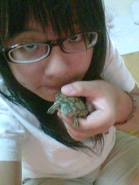 跟烏龜合照