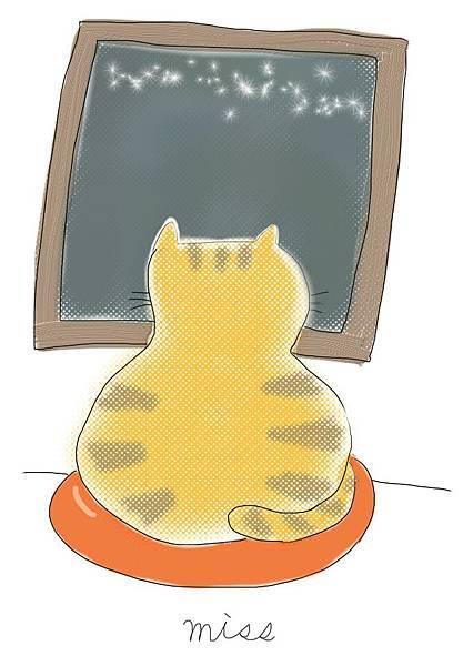 cat-miss