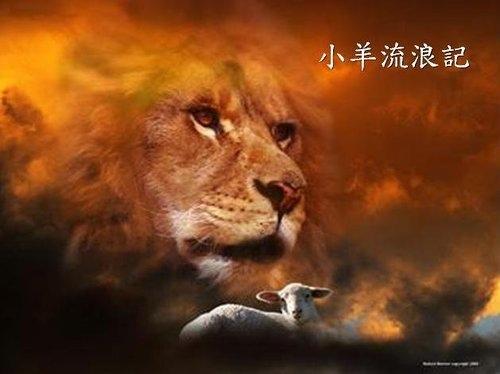 SHEEP LION.jpg