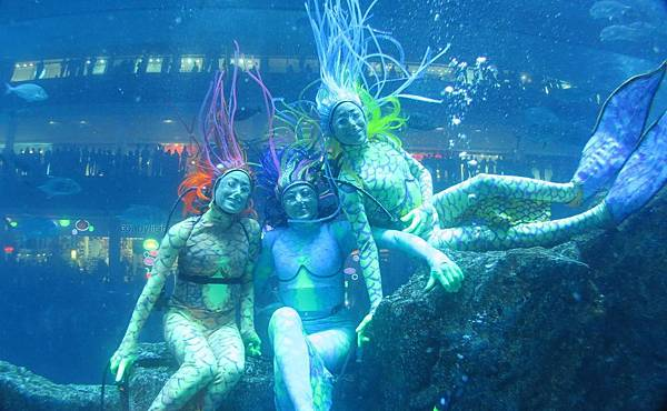 Mermaid-Show-at-Dubai-Aquarium-Underwater-Zoo