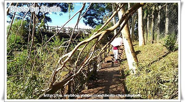 颱風過後2.jpg
