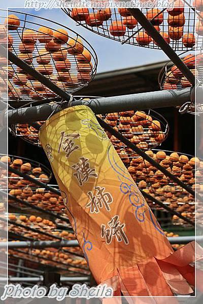 秋曬柿餅25.JPG