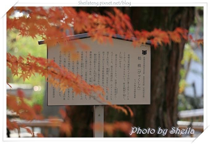 光明寺15.JPG