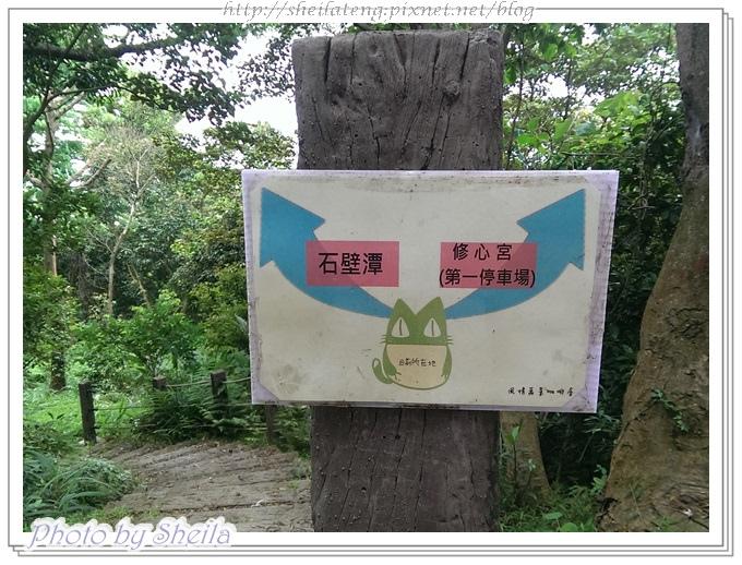 飛鳳山34.jpg