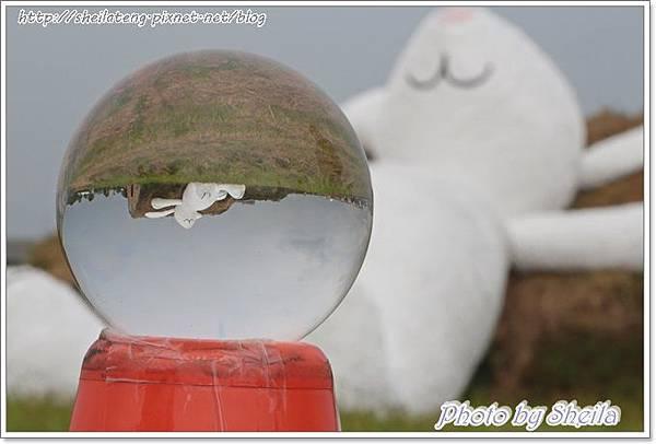 玉兔11.JPG