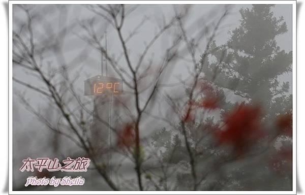 太平山13.JPG