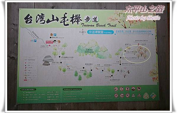 太平山219.JPG