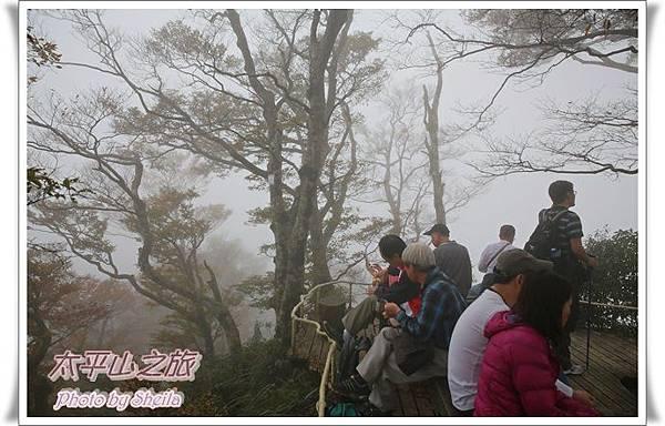 太平山251.JPG