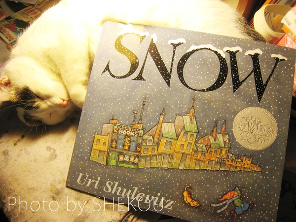 Uri Shulovitz_Snow.jpg