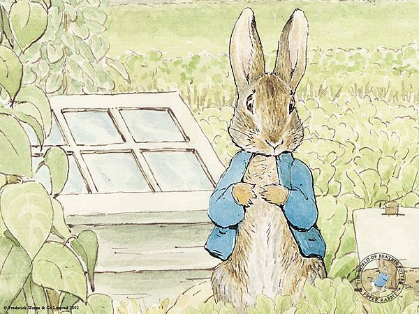 peterrabbit003.jpg