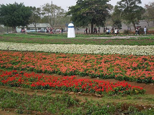 大溪花園農場3.jpg