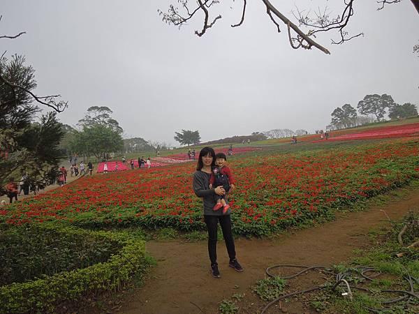 大溪花園農場8.jpg