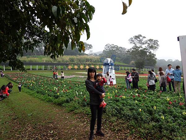 大溪花園農場10.jpg