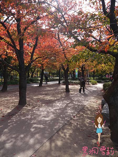 大阪城-52.jpg