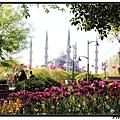 Istanbul 廣場