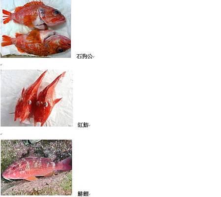 馬賽魚湯材料.jpg