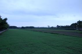 蘇花縱谷-3