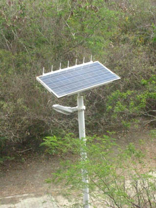243太陽能路燈.jpg