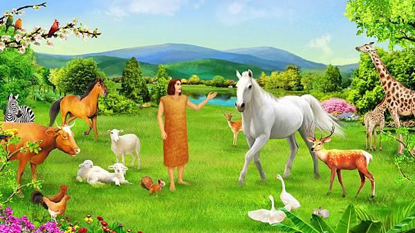 亚当给动物取名-牲畜2.jpg