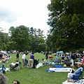 People came here for picnic and music.
