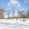 冰凍的公園
