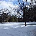 法學院圖書館前的廣場