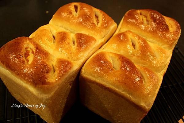 pumpkin filling bread 5.jpg