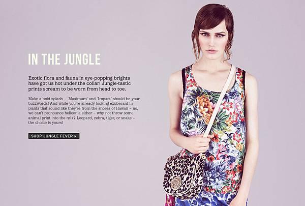 in-the-jungle.jpg