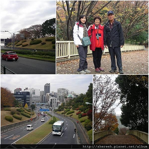 20121201-01代代木公園1