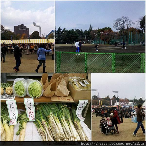 20121201-09神宮外苑4