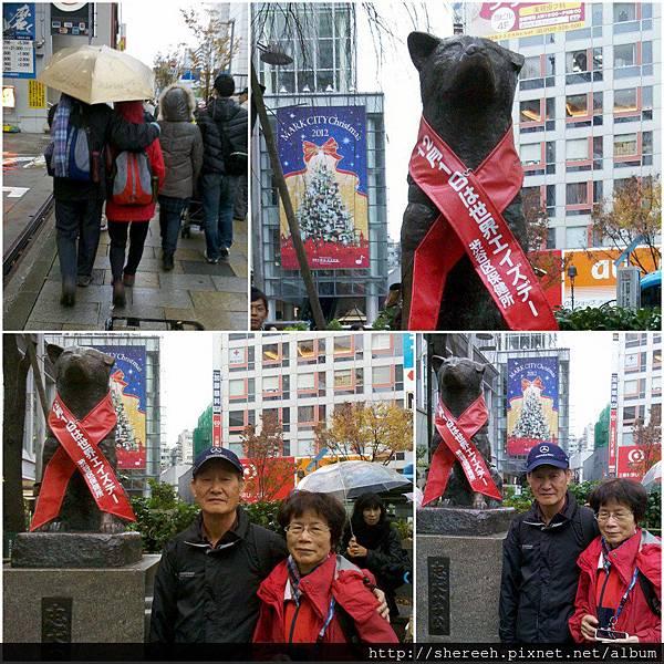 20121201-12涉谷八公犬