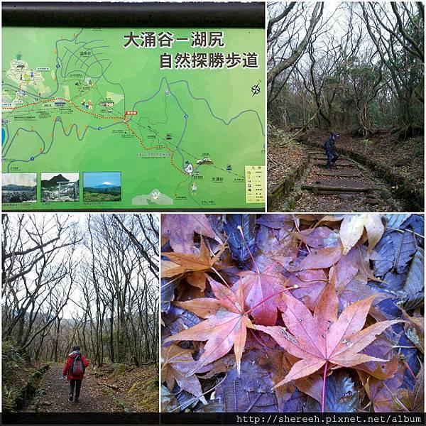 20121203-08自然探勝步道2