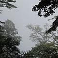 201009_74.JPG