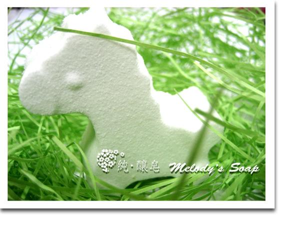 草原上的小白馬.jpg