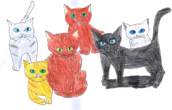貓戰士2 - 1.jpg