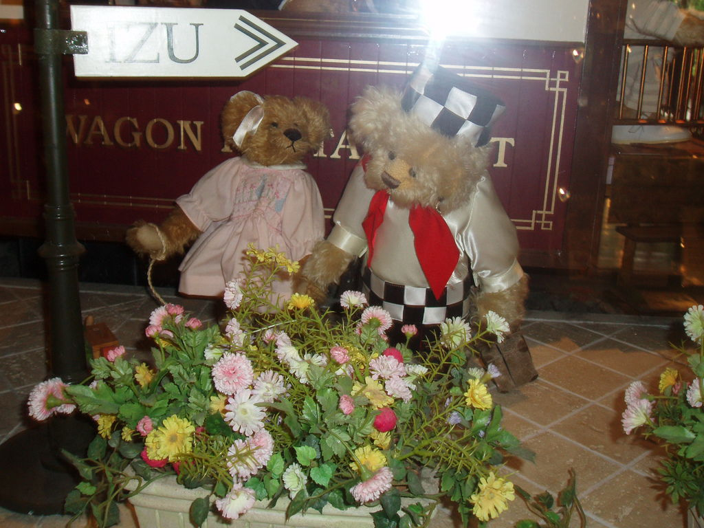 2010-07-03_01_伊豆_伊豆高原_泰迪熊博物館_28_泰迪熊夫婦.JPG