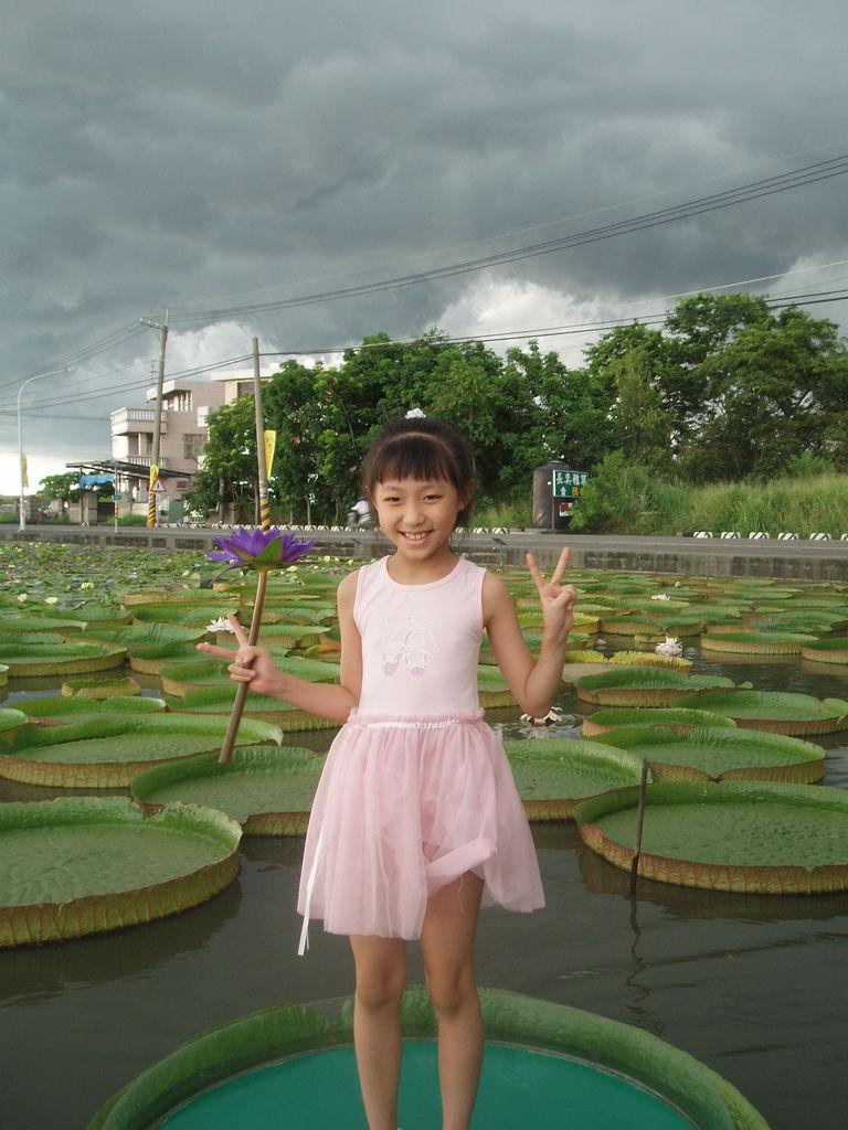 2011-08-16_02_台南白河_蓮緣蓮花池_03_蓮花仙子.jpg